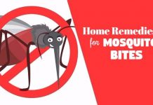 how to get rid of mosquito bites using home remedies for mosquito bites